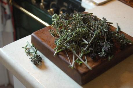 purplebroccoli