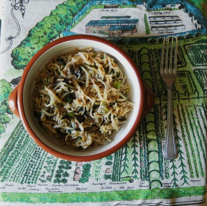 Budget Vegan Noodles on Cate in the Kitchen