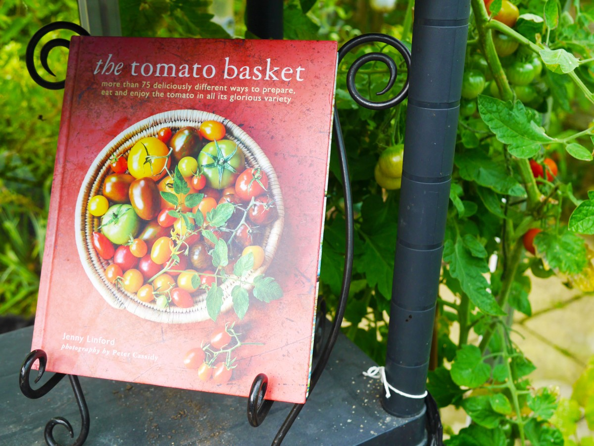 The Tomato Basket Book Review