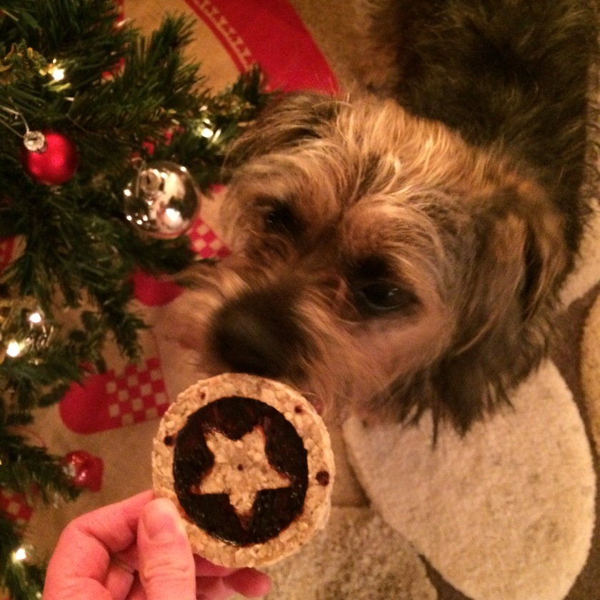 Mince Pie Dog Treat for Molly