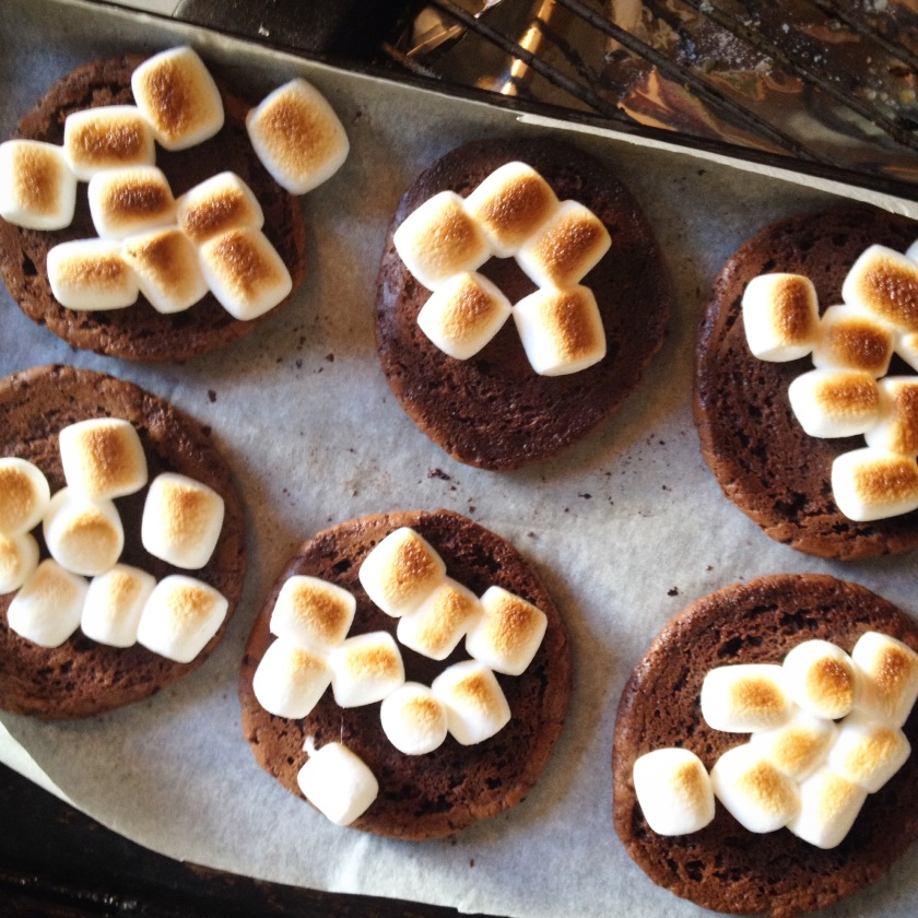 Love Food Box S'mores Brookies